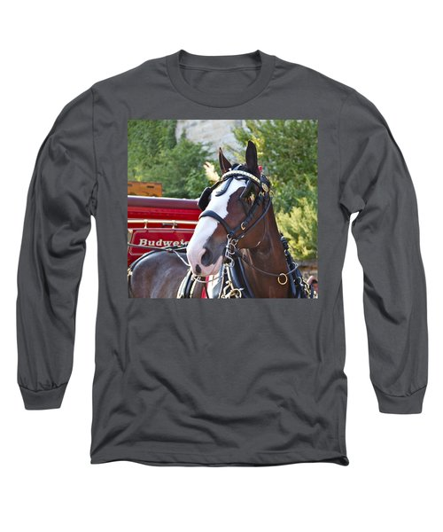 Clydesdale At Esp Long Sleeve T-Shirt