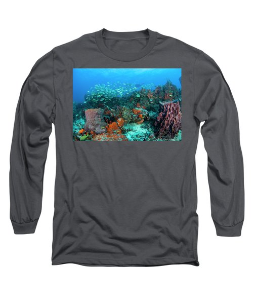 Color Of Life Long Sleeve T-Shirt