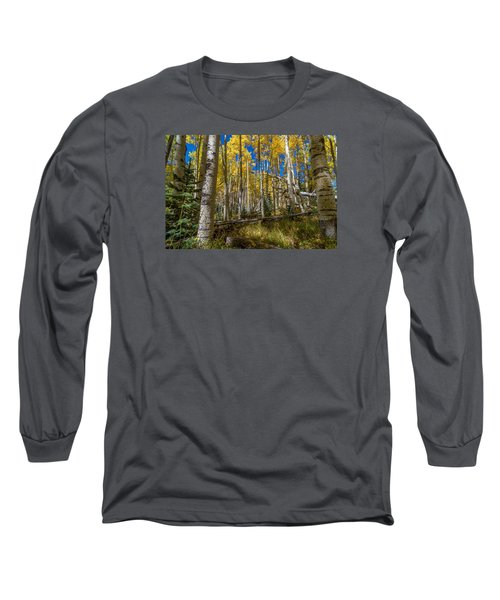 Colorado Fall Hike In The Aspens Long Sleeve T-Shirt by Michael J Bauer