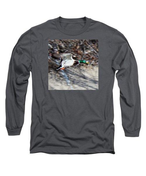 Colorado Mallard In Flight Long Sleeve T-Shirt