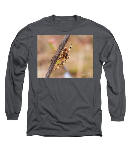 Colorful Spider Hanging From The Stick  Long Sleeve T-Shirt