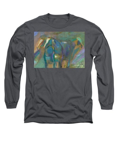 Colors Of The Southwest Long Sleeve T-Shirt by Frances Marino