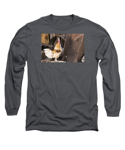 Long Sleeve T-Shirt featuring the photograph Contemplating Rust by Laura Pratt