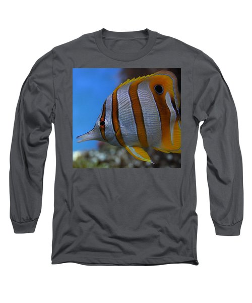 Copperband Butterflyfish Chelmon Rostratus Long Sleeve T-Shirt