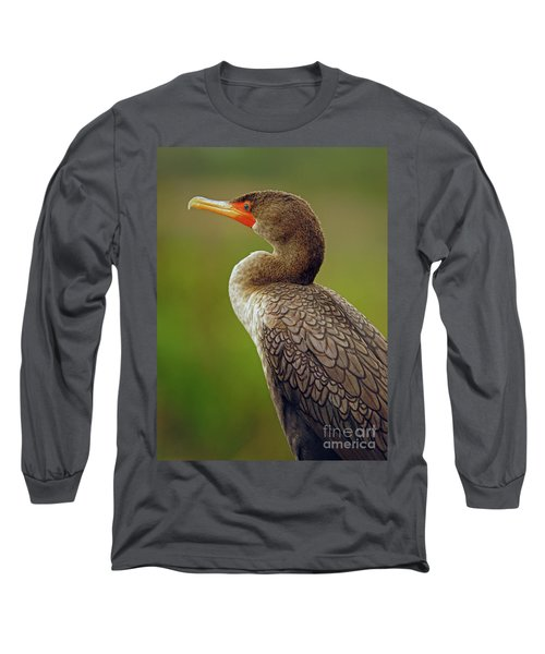 Cormorant Long Sleeve T-Shirt by Larry Nieland