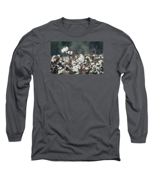 Cotton Field 5 Long Sleeve T-Shirt by Andrea Anderegg