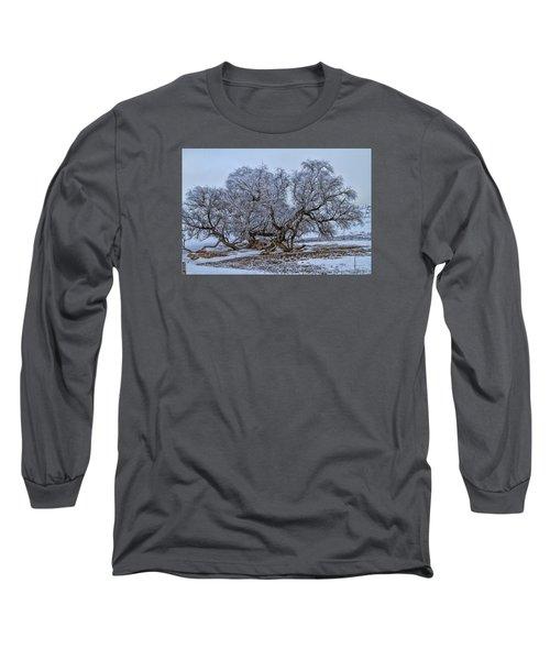 Cottonwood Sprawl Long Sleeve T-Shirt by Alana Thrower