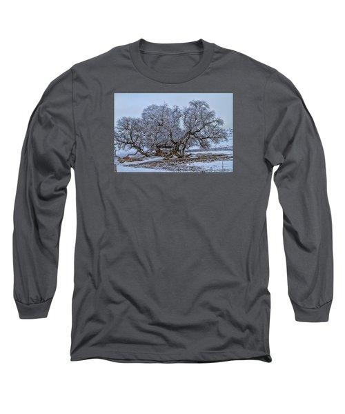 Cottonwood Sprawl Long Sleeve T-Shirt