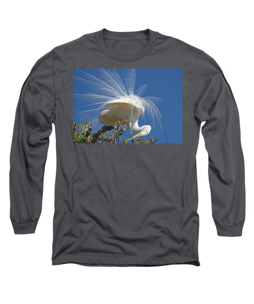 Courting Display Long Sleeve T-Shirt by Kenneth Albin