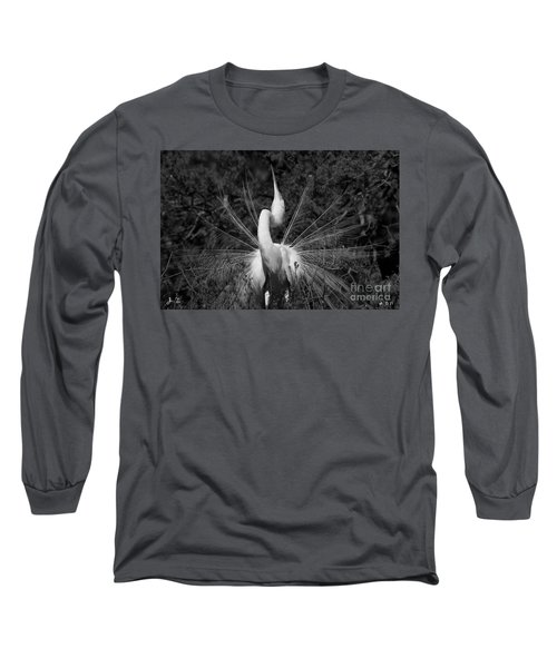 Great Egret Courtship Plumes Long Sleeve T-Shirt