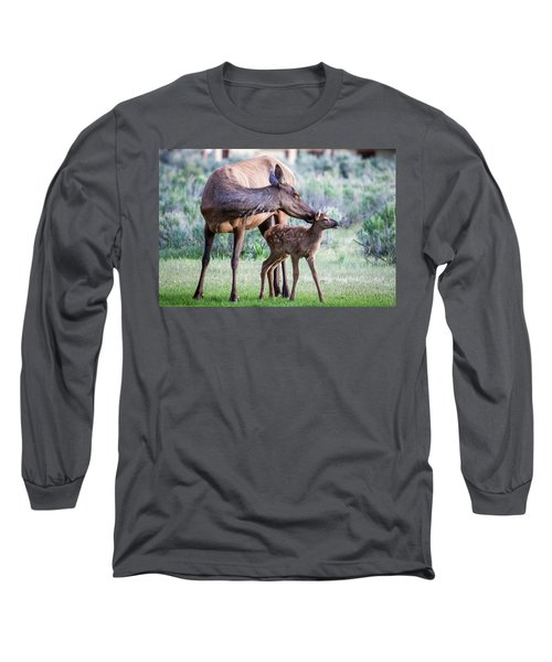 Cow And Calf Elk Long Sleeve T-Shirt