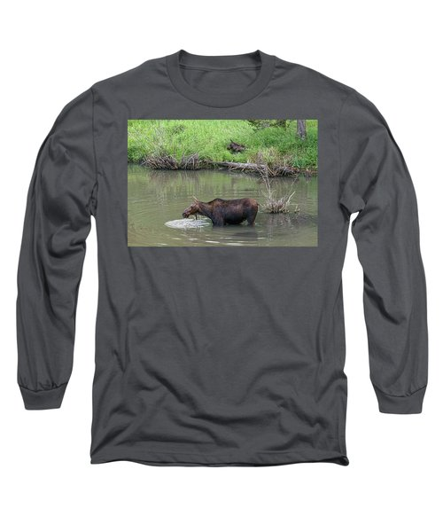 Long Sleeve T-Shirt featuring the photograph Cow Moose And Calf by James BO Insogna
