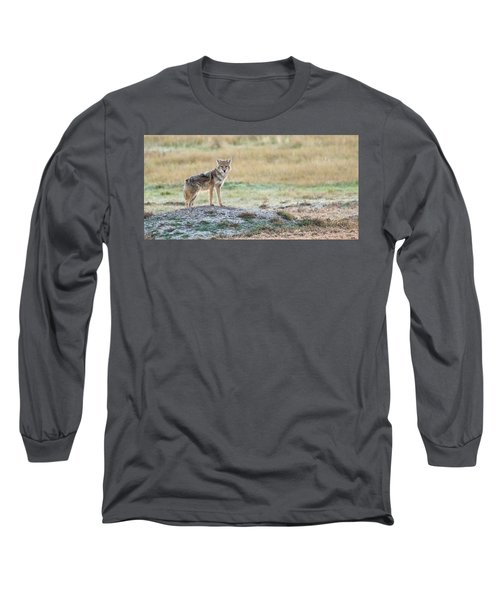 Coyotee Long Sleeve T-Shirt