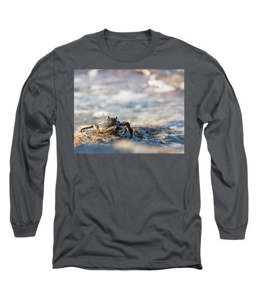 Crab Looking For Food Long Sleeve T-Shirt