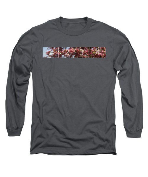 Crabapple In Spring Panoramic Map Long Sleeve T-Shirt