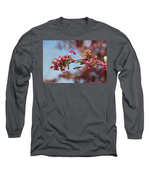 Crabapple In Spring Section 1 Of 4 Long Sleeve T-Shirt