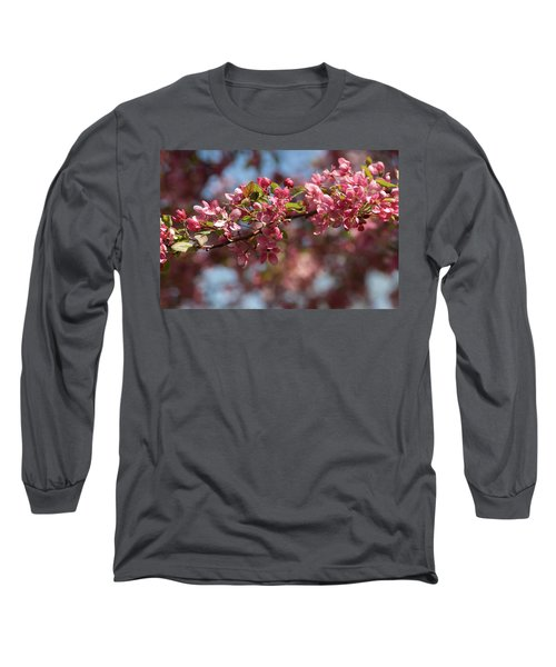 Crabapple In Spring Section 2 Of 4 Long Sleeve T-Shirt
