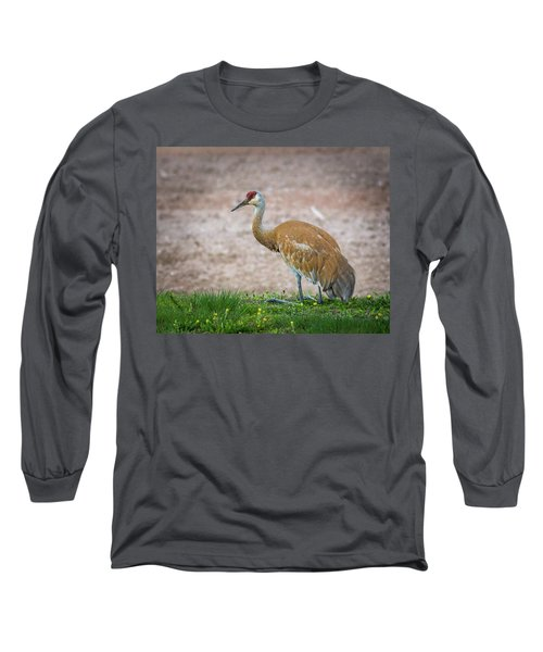 Long Sleeve T-Shirt featuring the photograph Crane Down by Bill Pevlor