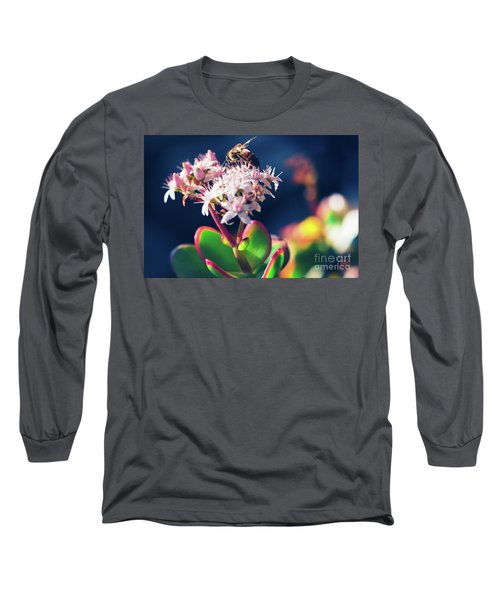 Long Sleeve T-Shirt featuring the photograph Crassula Ovata Flowers And Honey Bee by Sharon Mau