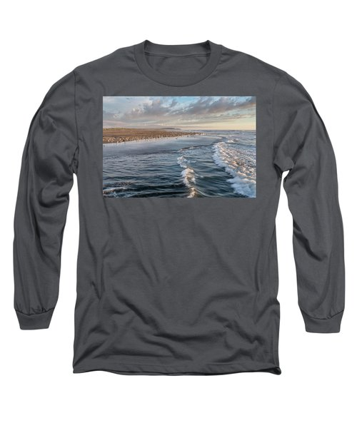 Crests And Birds Long Sleeve T-Shirt by Greg Nyquist