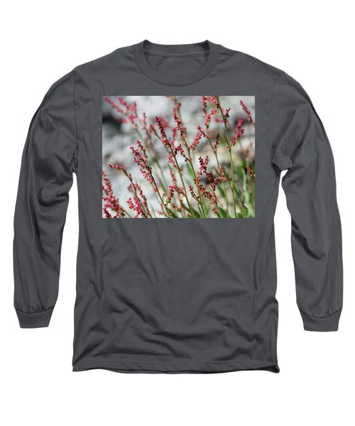 Crimson Field Long Sleeve T-Shirt