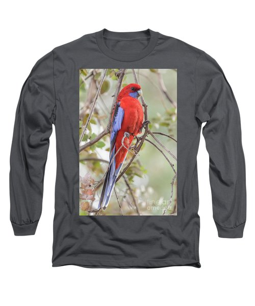 Crimson Rosella 01 Long Sleeve T-Shirt