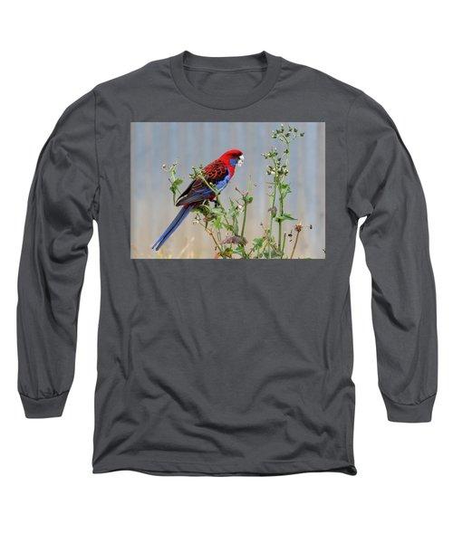 Crimson Rosella Long Sleeve T-Shirt