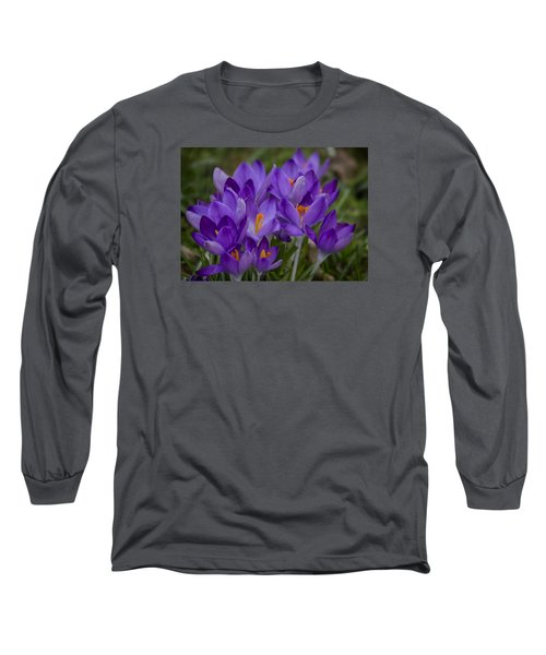 Crocus Cluster Long Sleeve T-Shirt by Shirley Mitchell