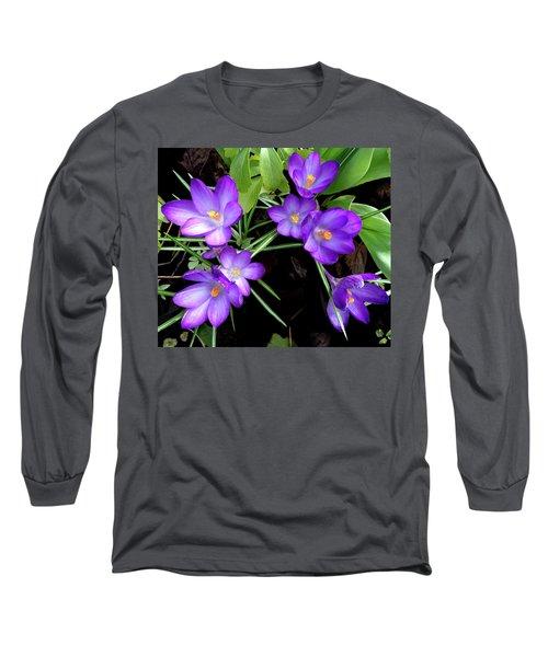 Crocus First To Bloom Long Sleeve T-Shirt by Tara Hutton