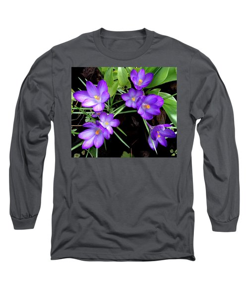 Crocus First To Bloom Long Sleeve T-Shirt