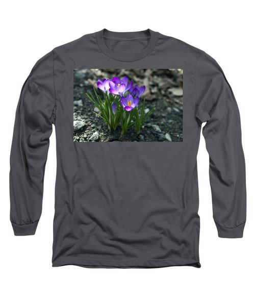 Long Sleeve T-Shirt featuring the photograph Crocus In Bloom #2 by Jeff Severson