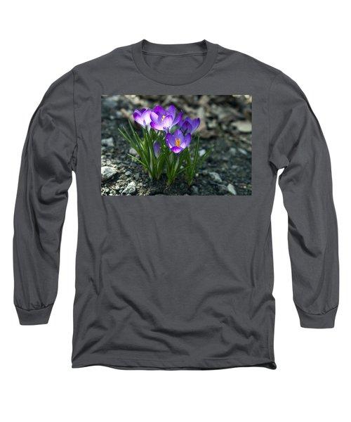 Crocus In Bloom #2 Long Sleeve T-Shirt