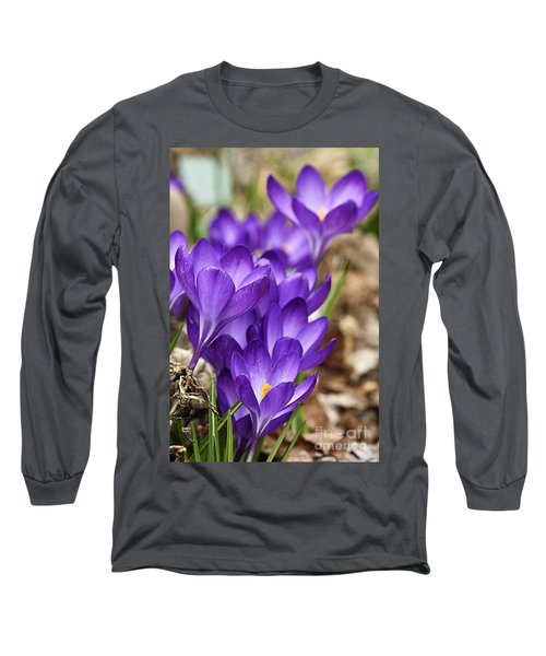 Long Sleeve T-Shirt featuring the photograph Crocuses by Larry Ricker