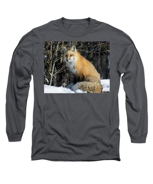 Crossroads With A Red Fox Long Sleeve T-Shirt