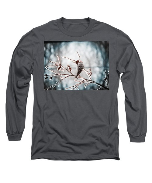 Crystal Morning Joy Long Sleeve T-Shirt by Zinvolle Art