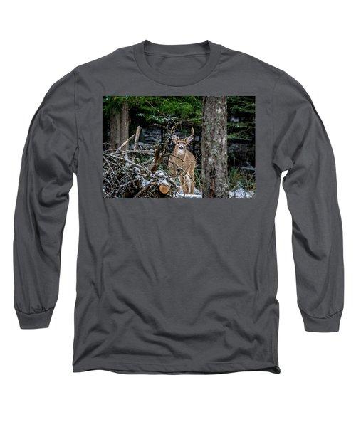 Curious Buck Long Sleeve T-Shirt