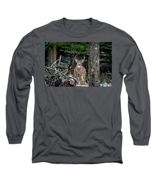 Curious Buck Long Sleeve T-Shirt