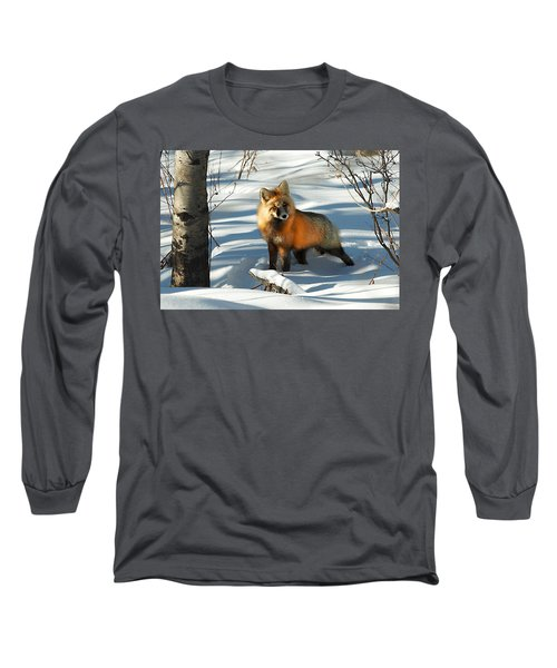 Curious Fox Long Sleeve T-Shirt