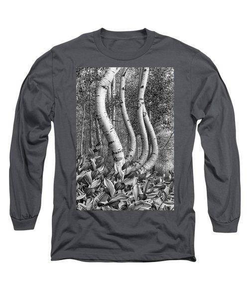 Curved Aspens Long Sleeve T-Shirt