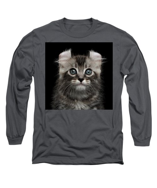 Cute American Curl Kitten With Twisted Ears Isolated Black Background Long Sleeve T-Shirt