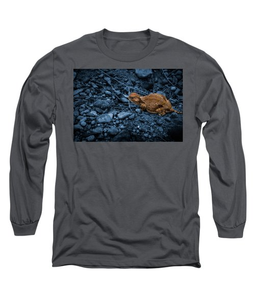 Cyanotype Horned Toad Long Sleeve T-Shirt by Bartz Johnson
