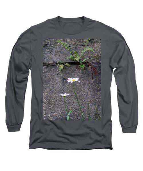 Daisy Loves Fern Long Sleeve T-Shirt