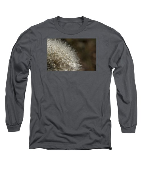 Dandelion Rain Long Sleeve T-Shirt