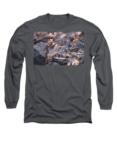 Dangerous Peekaboo  Long Sleeve T-Shirt