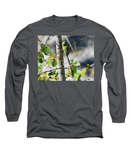 Darner Long Sleeve T-Shirt