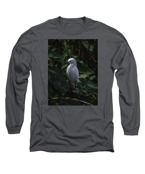 Long Sleeve T-Shirt featuring the photograph Date Night by Rob Wilson