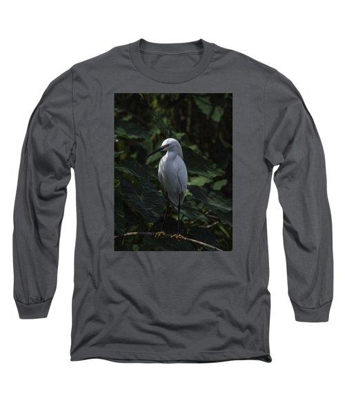 Date Night Long Sleeve T-Shirt by Rob Wilson