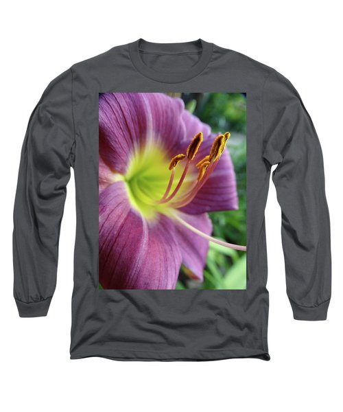 Daylilies In Summer Long Sleeve T-Shirt by Rebecca Overton