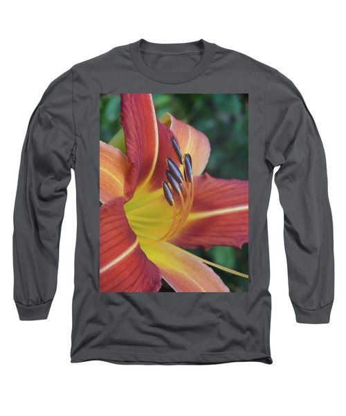 Daylilies Orange Long Sleeve T-Shirt