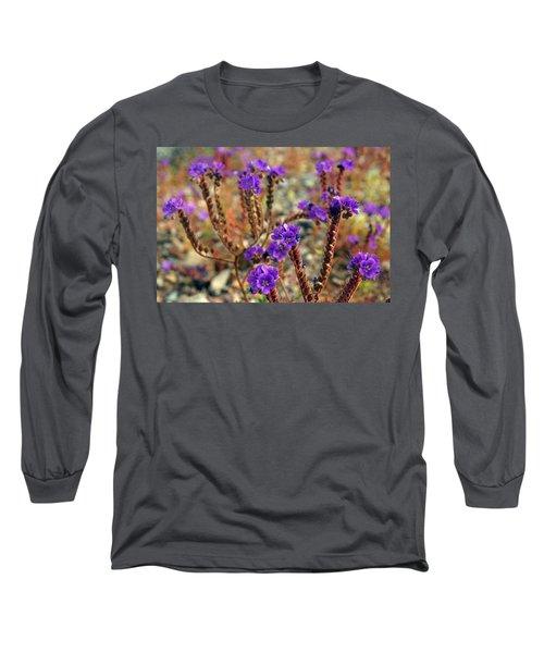 Death Valley Superbloom 106 Long Sleeve T-Shirt by Daniel Woodrum